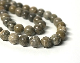 10mm Fossil Coral Beads, round natural gemstone, brown fossils, Full or half strands available  (1091S)