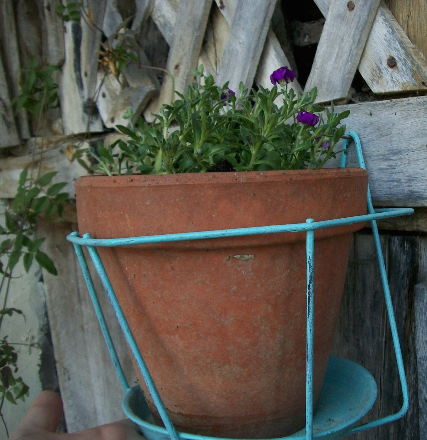 Vintage french metal balcony plant pot holders hanging basket for Balcony dictionary