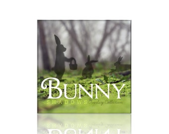 Bunny Shadow Overlays - 3 Photography Overlays - png File Digital Download