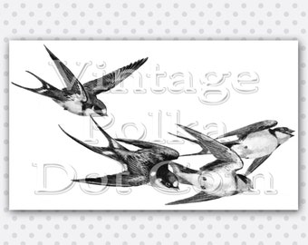 Clip Art Birds Swallows Flying Vintage Graphic Clipart Printable Digital Instant Download Scrapbooking Nature Birds Flight Swallow Large