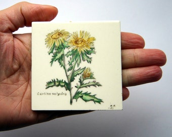 50s Botanical Tile Painting Artisan Handpainted Flower Carlina Signed Miniature Small Home Decor
