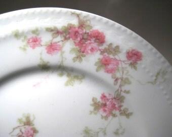 7 Haviland Plates Made in Limoges France