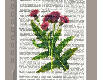 THISTLE4 Wall art home decor  -Dictionary art poster print Wall decor flower wall hanging - Wall art gift.