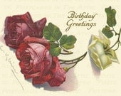 Victorian Red and White Roses  Birthday Greetings  - Digital Hand Designed Art - Scrapbooking, Card Making & Crafts - PRINTABLE DOWNLOAD