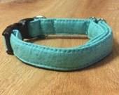 Turqoise Sparkles - Eco Dog Collar