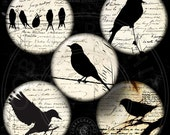 Bird Silhouettes -  Digital Collage Sheets - 20mm, 18mm, 16mm, 14mm, 12mm Printable Circles for Jewelry Making, Scrapbooking, Crafts CG-840C