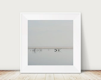 lake isabella photograph tree photograph minimalist decor water photograph california photograph landscape photograph travel photography