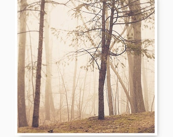 Landscape photography, fog print, Peaceful photo, tree print, forest, landscape print, landscape art print,  outdoors, nature