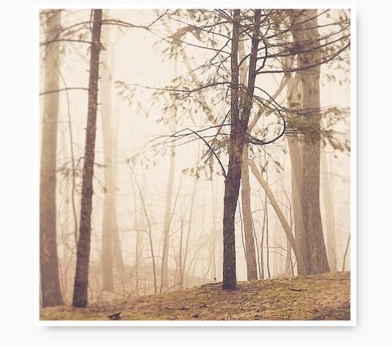 Landscape photography, fog print, Peaceful photo, tree print, forest, landscape print, landscape art print,  outdoors, nature