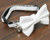 Cat Collar - Simply White - Matching Bow Tie and Flower Available