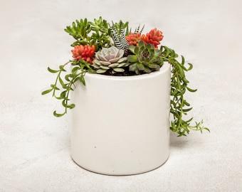 Concrete Planter, Concrete Jar, Concrete Containers