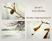 Winter nature, earthy colours, textured fine art photo, snow, brown, set of 3, Giclee print, 10x8, titled: Winter Impressions II