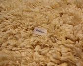 Coated Romney Fleece -  White Wool - 4.75 Pounds - Very Clean Fleece for Spinning - Lots of Beautiful Locks