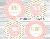 Monthly Baby Girl Stickers Gold Glitter Pink Blush Milestone Stickers Baby Month Stickers Monthly Bodysuit Sticker (Pink and Glitter)
