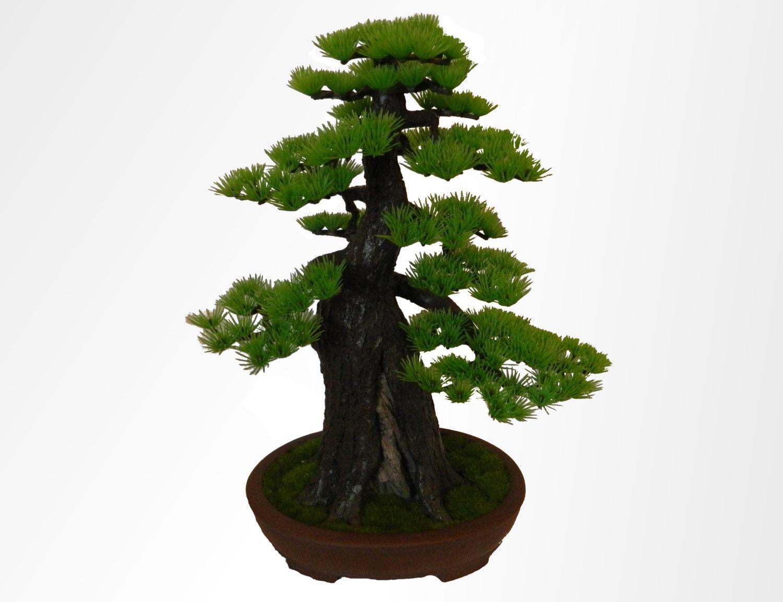 bonsai tree artificial pine in real ceramic bonsai pot hand. Black Bedroom Furniture Sets. Home Design Ideas