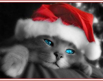 4 Kitten Cat Kittens Cats Christmas Santa Claus Hat Stationery Greeting Notecards/ Envelopes Set