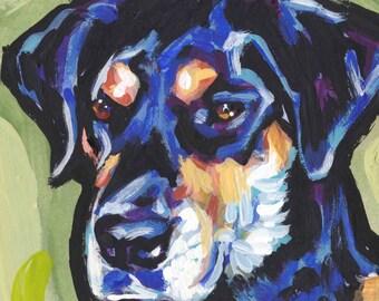"Rottador labrottie art print of pop art dog painting bright colors 8x8"" LEA"