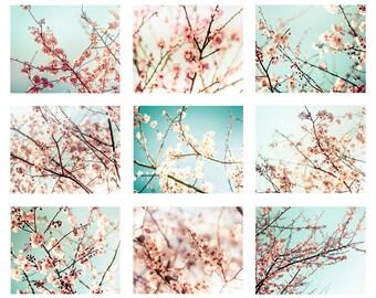 blossom photography spring set of 9 prints nature photography flower 8x10 11x14 fine art photography floral mint pink aqua large wall art