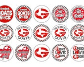 PREMIUM CUSTOM MADE High School , Sports Team Bottle Cap Images 4x6 Bottlecap Collage use for jewelry scrapbooking stickers necklace