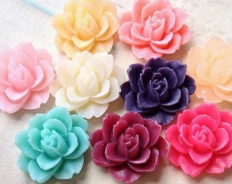 10 Pieces of ( 5 Pairs) 19 mm x 18 mm Assorted Color Resin Peony Flower Cabochons (.am)