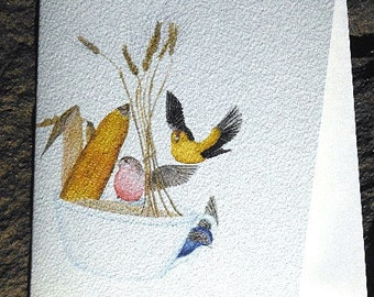 Funny Bird Notecard - Finches in watecolor and colored pencil on blank card