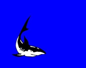 Shark 5