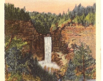 Vintage Linen Postcard..Taughannock Falls, in the Finger Lakes Region of Central New York....Unused....no. 1931.