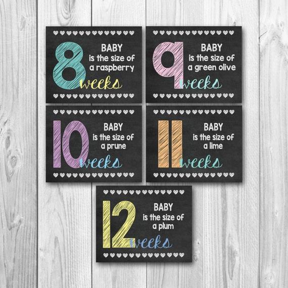pregnancy calendar countdown weekly pregnancy weekly