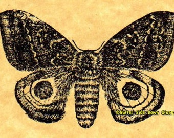 Io Moth Rubber Stamp
