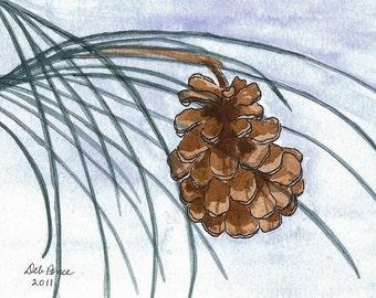Pinecone Watercolor Print