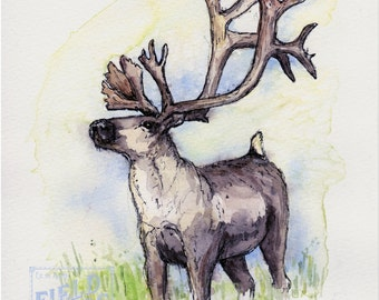 Original Reindeer Watercolor