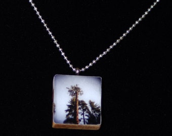 Photo Pendant Necklace - Sequoia Tree - jewelry - scrabble pendant necklace