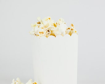 DIY Ready to Pop Plain White Popcorn Party Favor Box (SET OF 10)