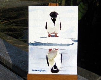 ACEO Limited Edition 4/25 ~ You lookin at me?, Penguin Art print of an ORIGINAL ACEO watercolor painting, Gift for Bird lovers