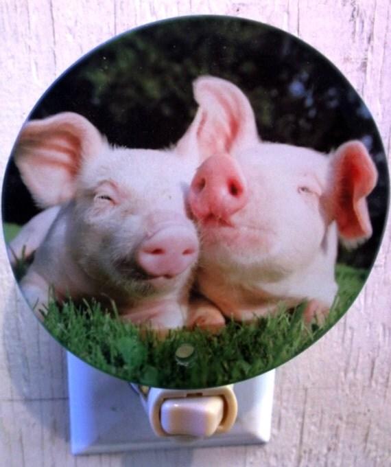 pig night light, animal night light, funny night light, farm night light, decorative night light, bathroom light, kids light, kitchen light