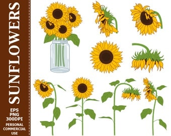 70% OFF SALE Digital Sunflowers Clip Art - Yellow, Green, Sun, Flowers, Mason Jar, Bouquet Clip Art