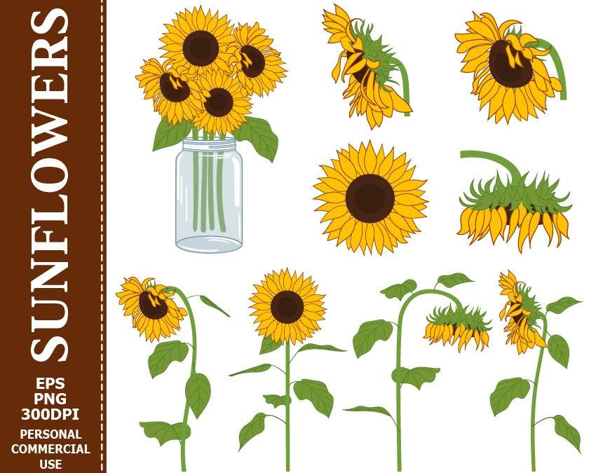 70% OFF SALE Digital Sunflowers Clip Art Yellow Green Sun