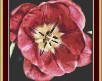 Flower Detail Cross Stitch Pattern