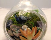 Miniature Handblown Glass Succulent Terrarium Garden with Peacock