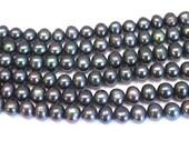 Black Freshwater Pearls, Dark Gray Semi Round Potato Pearls 8-9mm--set of 18