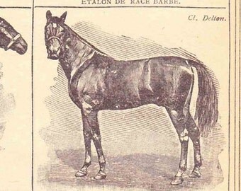 Antique French Print Dictionary Page 1920s Illustration Race Horses Thoroughbred paper projects scrapbooking, collage book page