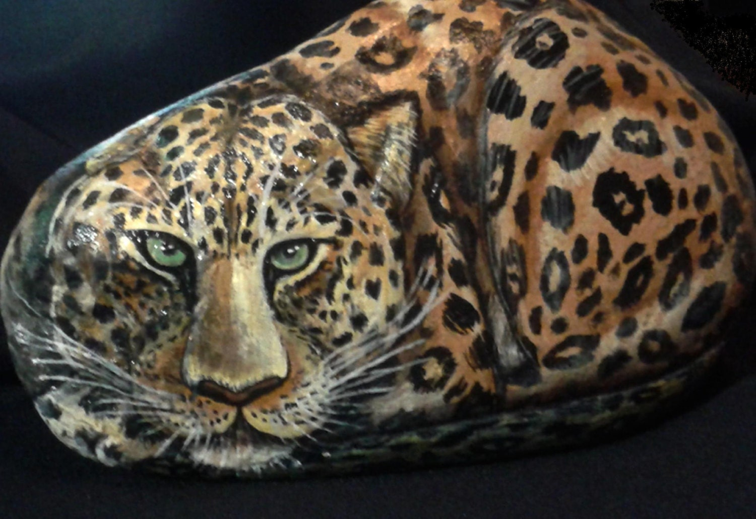 painted stones river rock leopard wild cats animal