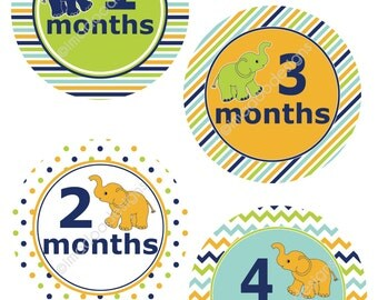 SALE - Modern Baby Boy Elephant Month Stickers - Months 1 through 12