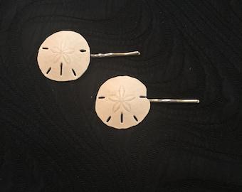 Real sand dollar bobby pins