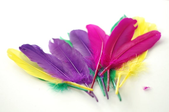 Dyed loose feathers colorful chicken feather for diy arts for Where can i buy feathers for crafts
