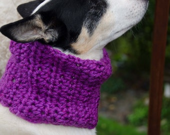 Dog Scarf/Cowl  Crochet in Chunky Purple Yarn  Size Medium Perfect for dressing up your doggie