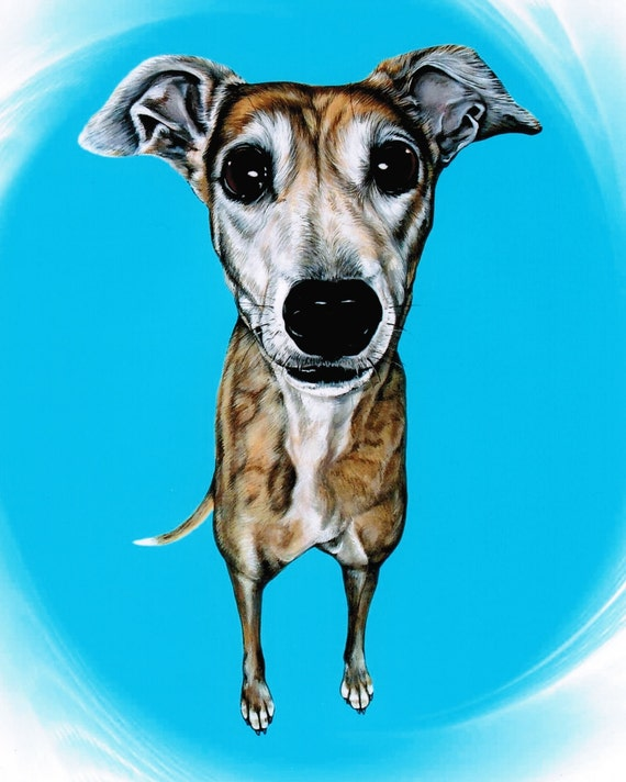 Greyhound Greyhound Art Brindle Greyhound Pet By Artbyweeze