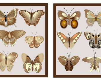 "Butterfly Collection Wall Art Prints, 2, 11"" x 14""  Prints"