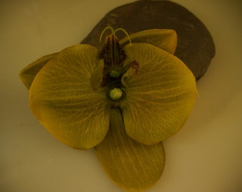 single lime orchid hair clip