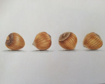 Original colored pencil drawing hazelnuts,still life painting,wall decor.kitchen art